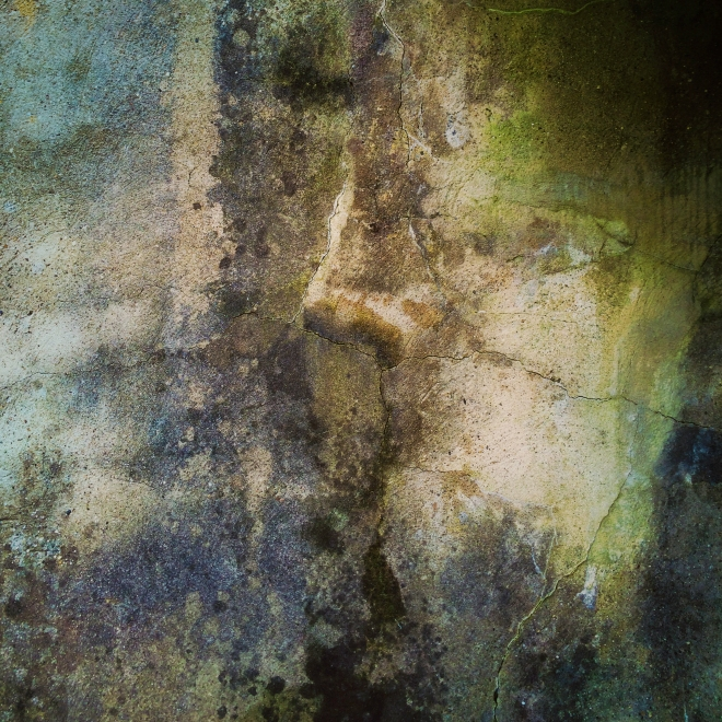 garden_wall_02_2014