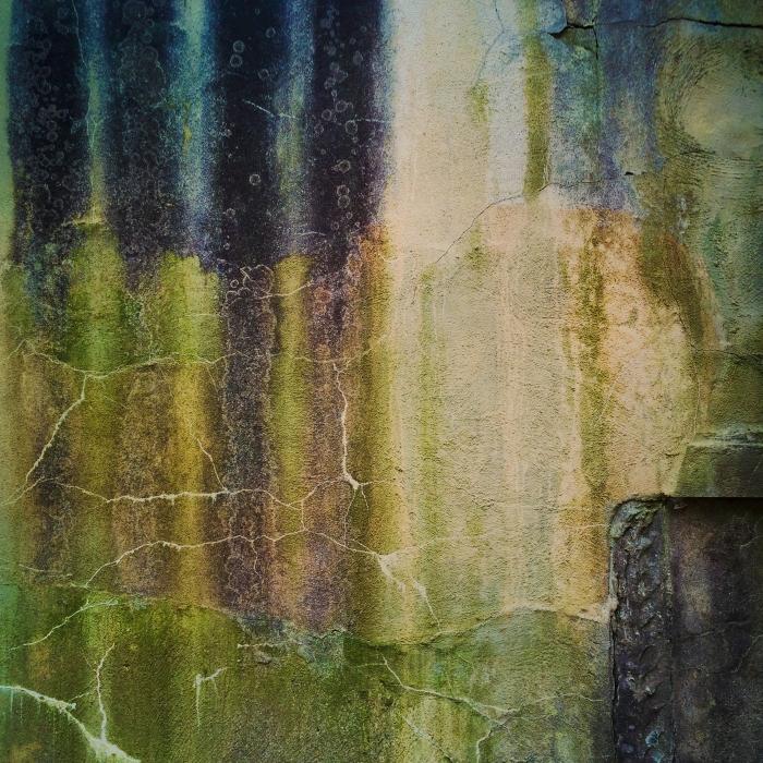 garden_wall_04_2014
