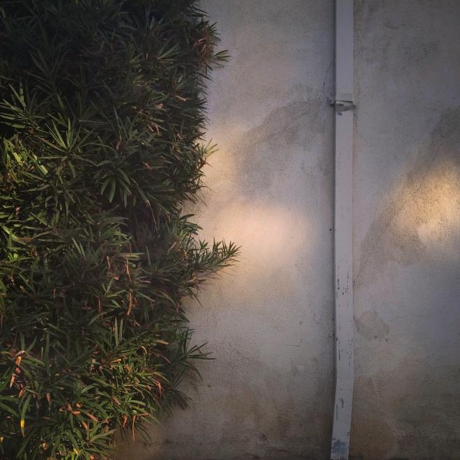 light_shadows_11_2014